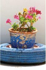 Tire Flower Pot